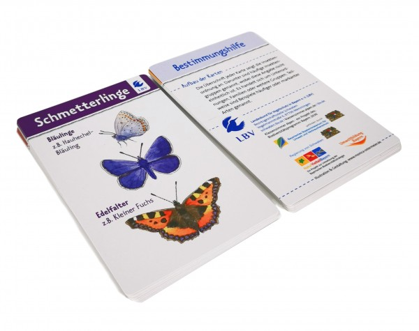 """Karten-Set """"Insekten auf der Wiese"""""""